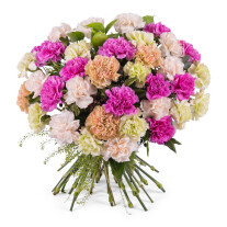 Bouquet of multicoloured carnations